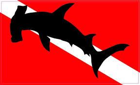 5inx3in Hammerhead Shark Diver Down Flag Sticker Vinyl Window Decals Window Decals Bumper Stickers