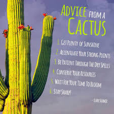 advice from a cactus cactus quotes