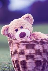 purple teddy in a basket