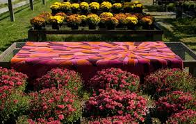 the sunset hand tufted wool area rug by