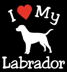 Pair Of I Love My Dog Labrador Pet Car Decals Stickers Ready To Apply Pet Car Decals Dog Decals Pet Car