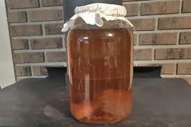 kombucha recipe 1 gallon fermenters