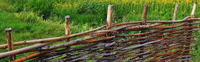 Fencing Ideas For Your Garden Fencing Blogs Lawsons