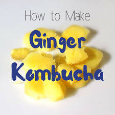 ginger kombucha recipe homemade for elle