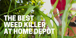 Best Weed Killer At Home Depot In 2020 Kill Weeds Fast