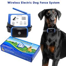 Top 12 Best Invisible Dog Fences Reviews In 2020
