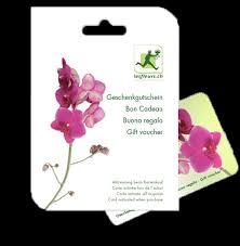 gift voucher florists