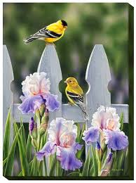 F593628329 I Picket Fence Goldfinches I Wrapped Canvas Bird Art Canvas Art Painting Artwork Painting