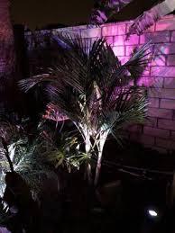 paradise garden center 7109 dufferin
