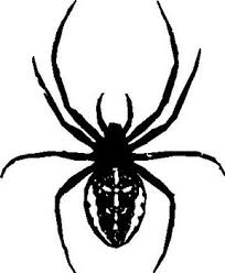 Black Widow Spider Vinyl Cut Decal