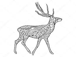 Deer Coloring Book For Adults Vector Stock Vector