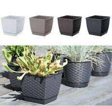 plant flower pot outdoor indoor ceramic