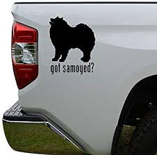 Amazon Com Hiweike Got Samoyed Dog Pet Vinyl Decal Laptop Car Truck Bumper Window Sticker Automotive
