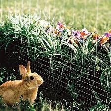 Amazon Com Yardgard 308376b Garden Rabbit Fence 28 Inch X 50 Foot Green Lawn And Garden Hand Tools Garden Outdoor