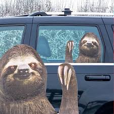 Ride With A Sloth Car Decal Right Hand Walmart Com Walmart Com