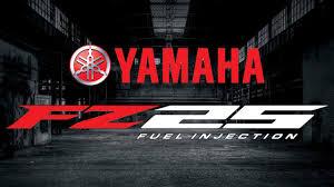 yamaha fz25 mileage specs