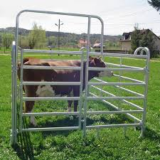 China Cheap Price Galvanized Hog Wire Fence Panels Farm Fencing Panels Yeson Factory And Manufacturers Yeson