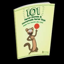 101 ferret games homemade ferret toys
