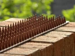 4 4m Anti Climb Wall Fence Spikes Cat Bird Animal Repellent Intruder Detterent Eur 8 11 Picclick Fr