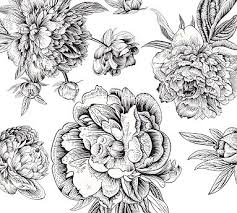 Black White Flowers Wall Decal Pottery Barn