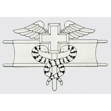 Buy Expert Field Medical Badge Decal At Army Surplus World