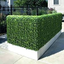 Amazing Artificial Green Grass Fence Walls Covering Hedge
