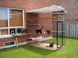 Safe Friendly Cat And Dog Enclosures Home Of Habitat Haven Outdoor Cats Inside Cat Cat Cages