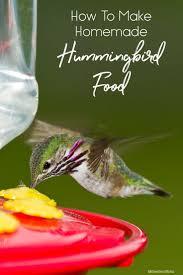 how to make homemade hummingbird food