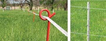 Temporary Electric Fencing Guide Patriotglobal Com Electric Fence Fence Modern Fence