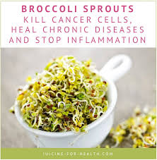 broccoli sprout juice fights cancer