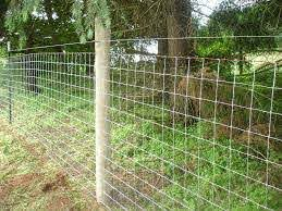 Fencing Wire At Eye Level At Top Of Regular Fence To Prevent Climbing Some Use Barbwire Others Use Electrified Wire Fence Prices Sheep Fence Goat Fence