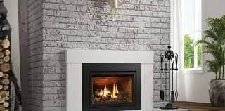 what fireplace inserts are the best