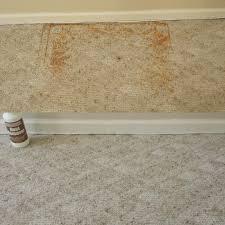 carpet cleaning stafford virginia