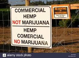 Hemp Fence High Resolution Stock Photography And Images Alamy
