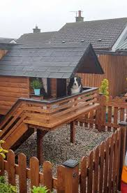 Man Builds His Beloved Border Collie A Dog Cabin In The Backyard