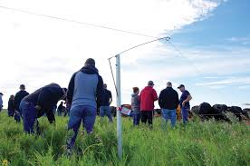 Automatic Fence Lifter Cuts Labour On High Density Grazing Manitoba Co Operator