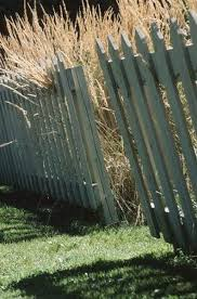 Vegetable Garden Fence Ideas Home Guides Sf Gate