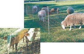 Portable Electric Net Fast Fence Sheep Goat Poultry Dogs Fencing Nets Netting
