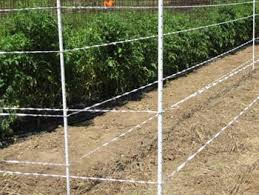 Electric Fence Posts And Why They Are Importa Gallagher Electric Fencing Valley Farm Supply Superstore