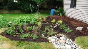 seattle residents build rain gardens