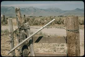 Fence Tightener For Barbed Wire And Wood Fence Library Of Congress