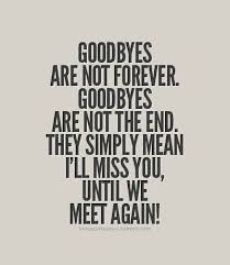 we ll meet again missing my brother goodbye quotes