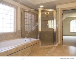 picture of luxury bathroom tub shower