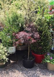 supply garden centers in burlington
