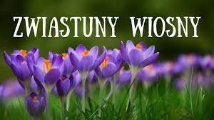 Dziś rozpoczęła się Wiosna astronomiczna. A jutro – Wiosna ...