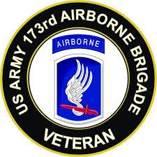 U S Army 173rd Airborne Brigade Veteran Sticker Decal