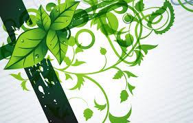wallpaper flowers green background
