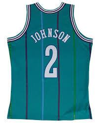 Mitchell & Ness Men's Larry Johnson Charlotte Hornets Hardwood ...