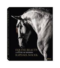 teneues publishing equine beauty