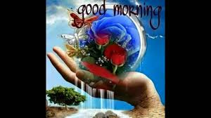 good morning flowers for you wishes greetings sms sayings quotes e
